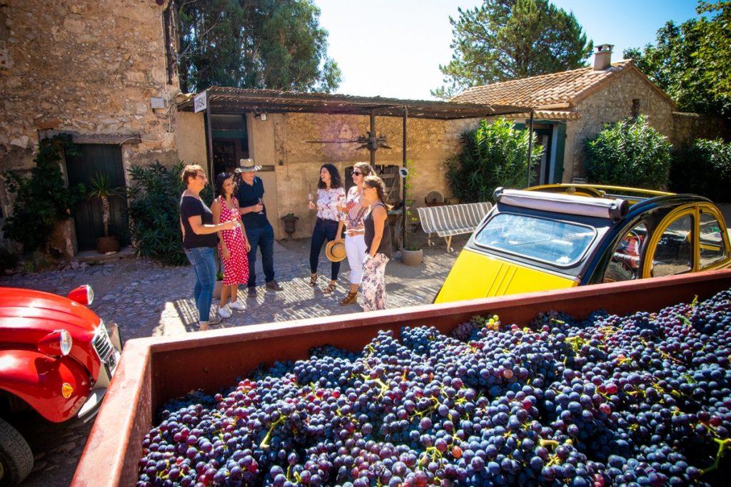 Domaine Les Fenals Dégustation Vin4HeuresTour